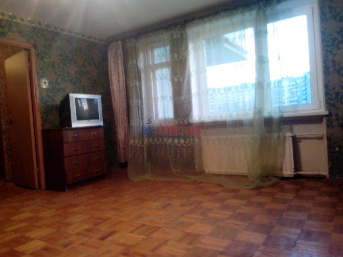 2-комнатная квартира (55м2) в аренду по адресу Индустриальный пр., 35— фото 4 из 9