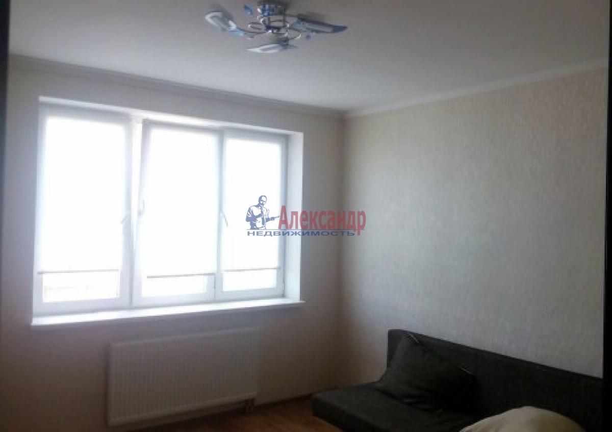 1-комнатная квартира (33м2) в аренду по адресу Пулковское шос., 38— фото 3 из 5