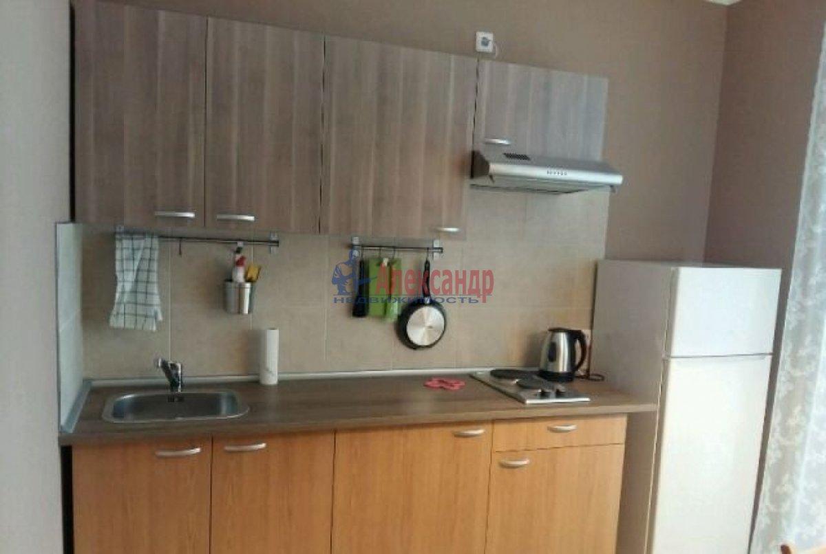 1-комнатная квартира (40м2) в аренду по адресу Обуховской Обороны пр., 195— фото 1 из 6
