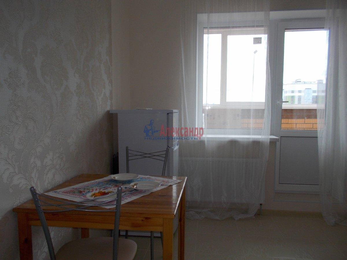1-комнатная квартира (39м2) в аренду по адресу Кушелевская дор., 5— фото 3 из 9
