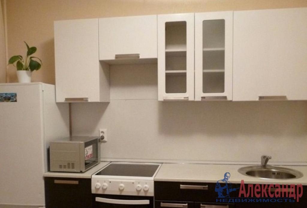 1-комнатная квартира (40м2) в аренду по адресу Беринга ул., 1— фото 2 из 3