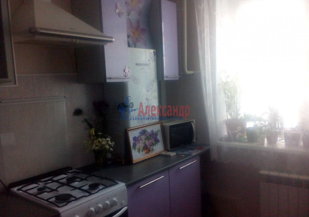 1-комнатная квартира (35м2) в аренду по адресу Шаумяна пр., 43— фото 2 из 5