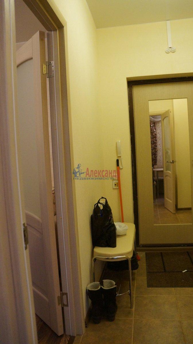 1-комнатная квартира (33м2) в аренду по адресу Кудрово дер., Ленинградская ул., 3— фото 6 из 6