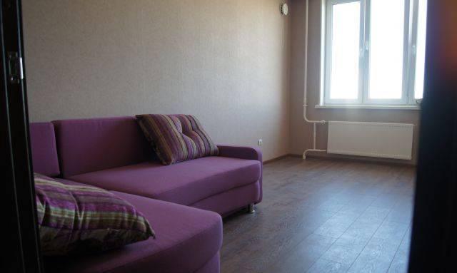 1-комнатная квартира (42м2) в аренду по адресу Северный пр., 8— фото 1 из 2