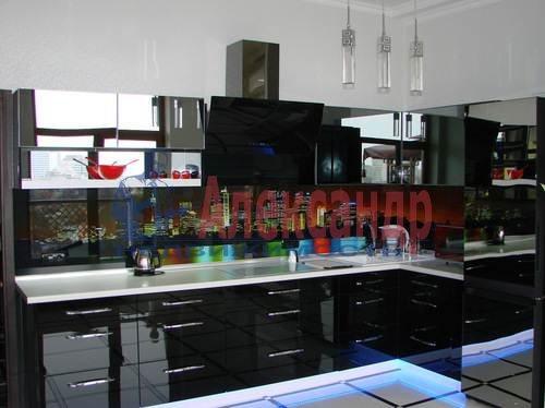 1-комнатная квартира (62м2) в аренду по адресу Петрозаводская ул., 16— фото 1 из 6