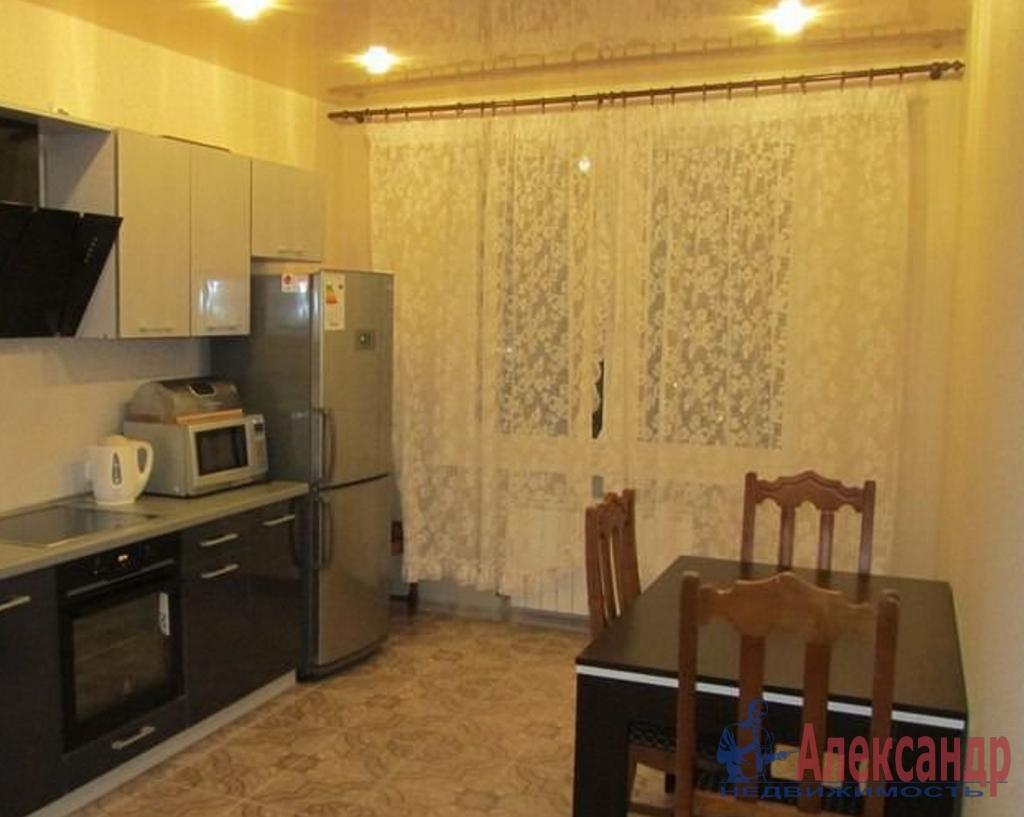 1-комнатная квартира (48м2) в аренду по адресу Ветеранов пр., 122— фото 2 из 2