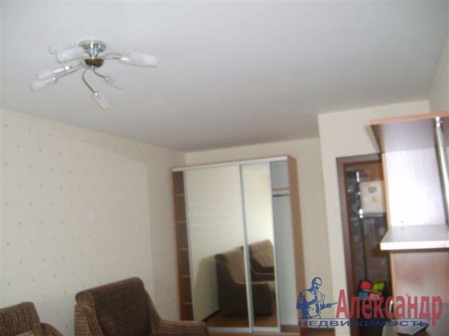 1-комнатная квартира (35м2) в аренду по адресу Александровской Фермы пр., 2— фото 2 из 2
