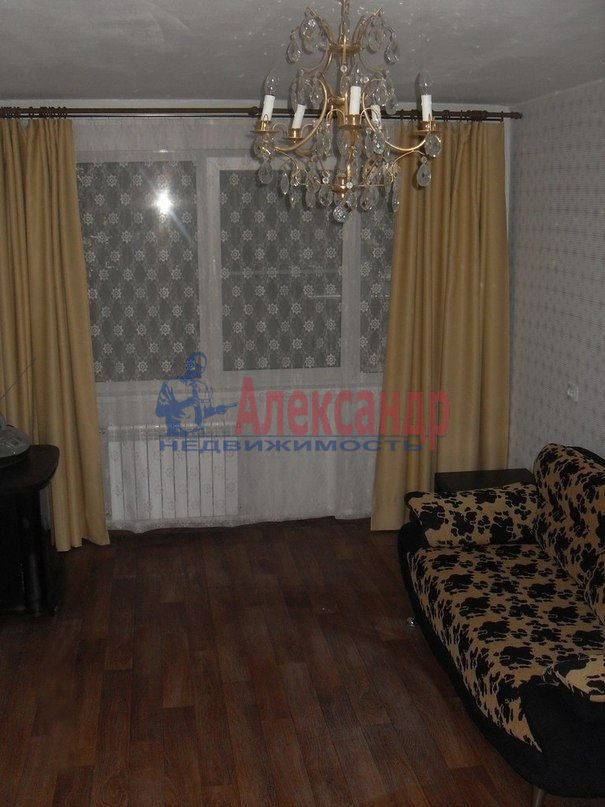 1-комнатная квартира (33м2) в аренду по адресу Суздальский пр., 93— фото 2 из 3