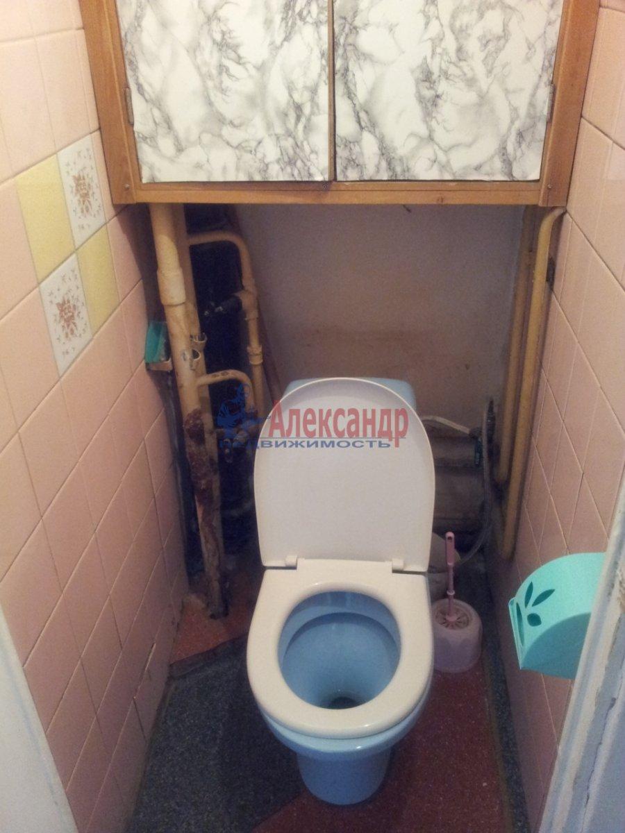 1-комнатная квартира (36м2) в аренду по адресу Просвещения просп., 87— фото 5 из 6