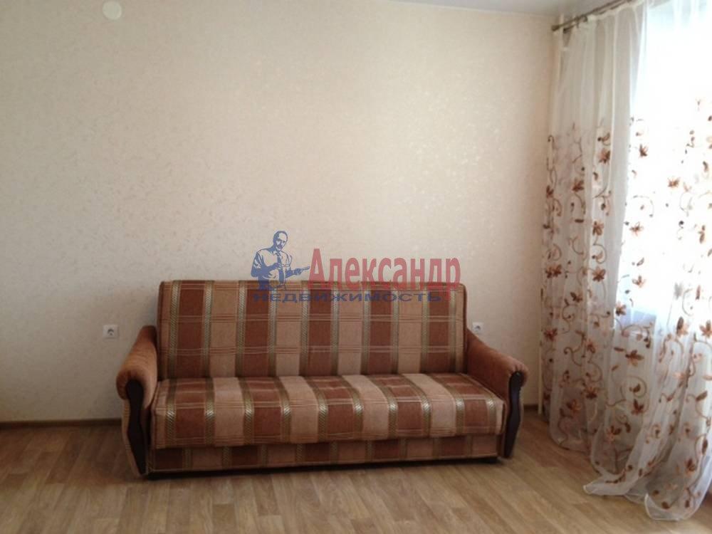 1-комнатная квартира (42м2) в аренду по адресу Земледельческая ул., 5— фото 6 из 10