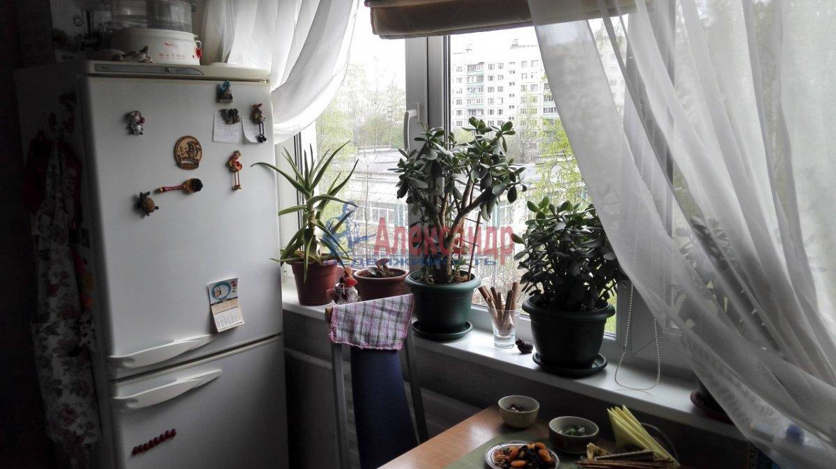 1-комнатная квартира (30м2) в аренду по адресу Купчинская ул., 17— фото 3 из 5