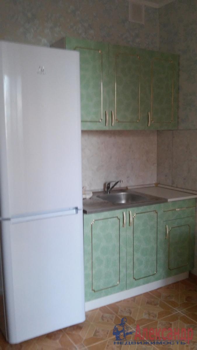 1-комнатная квартира (41м2) в аренду по адресу Космонавтов просп., 61— фото 3 из 6