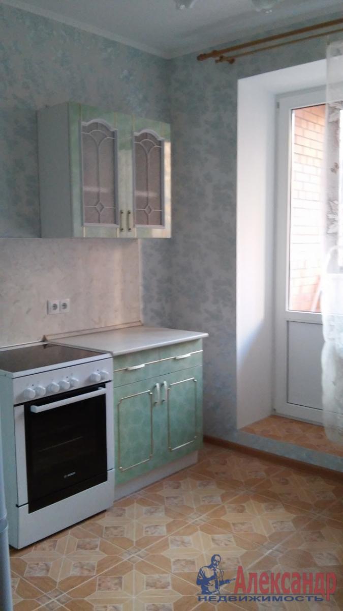 1-комнатная квартира (41м2) в аренду по адресу Космонавтов просп., 61— фото 4 из 6