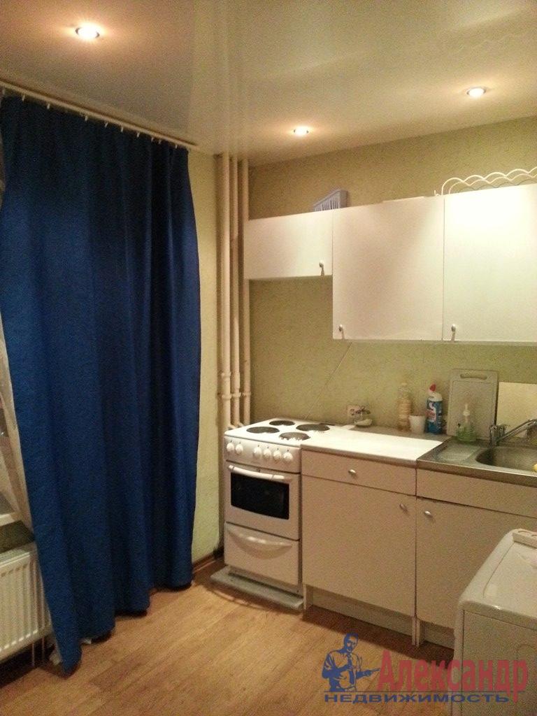 1-комнатная квартира (35м2) в аренду по адресу Непокоренных пр., 14— фото 1 из 7