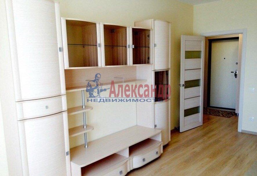 1-комнатная квартира (45м2) в аренду по адресу Коллонтай ул., 17— фото 8 из 9