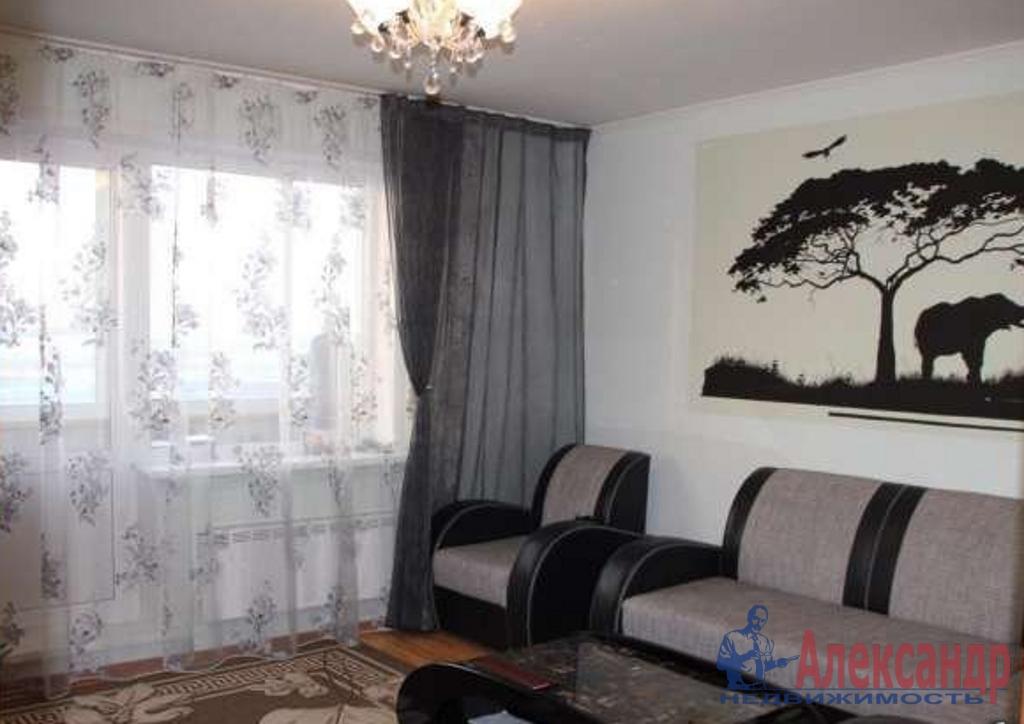 2-комнатная квартира (65м2) в аренду по адресу Просвещения пр., 33— фото 1 из 3