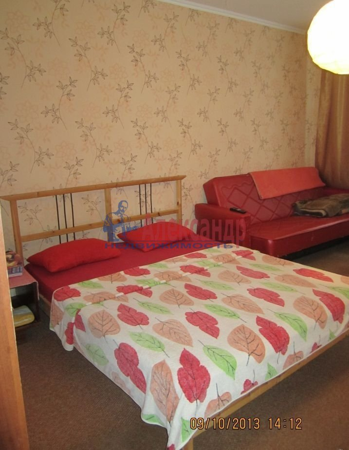 1-комнатная квартира (41м2) в аренду по адресу Комендантский пр., 24— фото 2 из 3