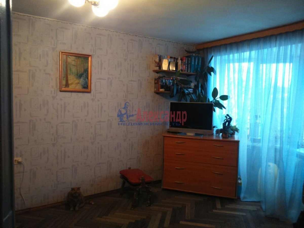 1-комнатная квартира (36м2) в аренду по адресу Просвещения пр., 30— фото 2 из 4