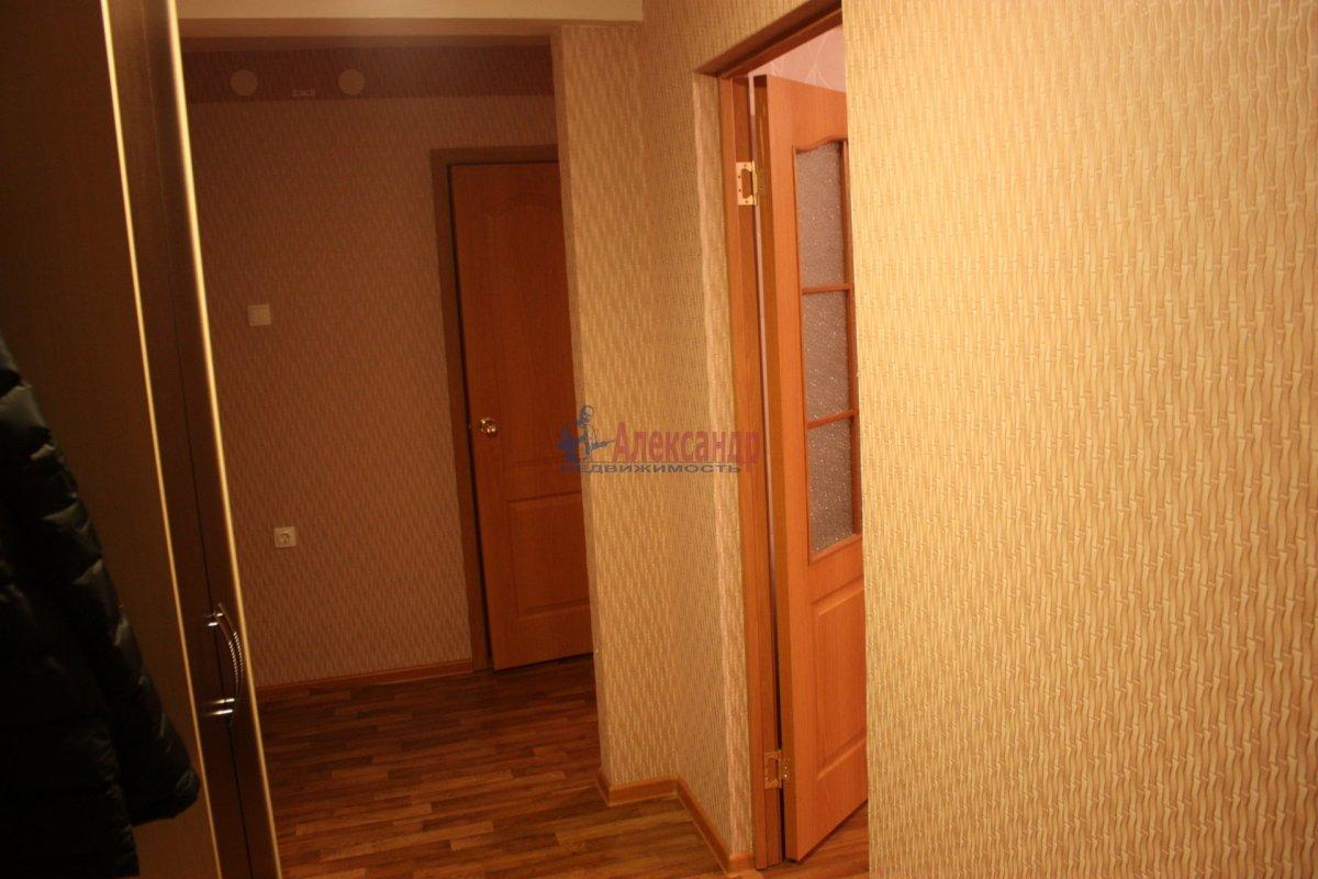 2-комнатная квартира (58м2) в аренду по адресу Богатырский пр., 49— фото 23 из 23