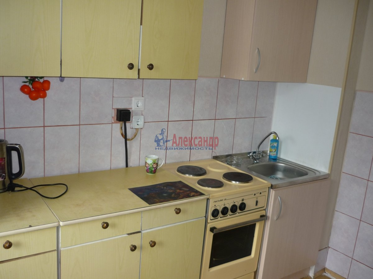2-комнатная квартира (56м2) в аренду по адресу Авиаконструкторов пр., 17— фото 2 из 13