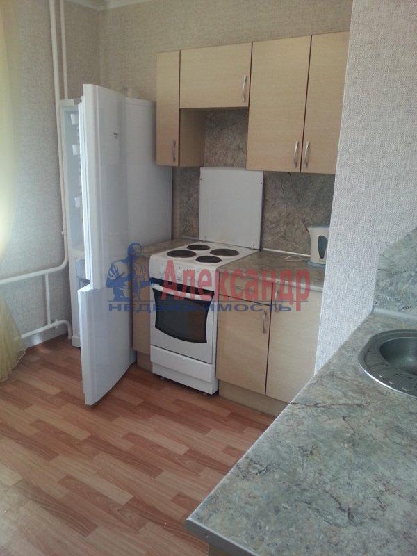 1-комнатная квартира (40м2) в аренду по адресу Науки пр., 17— фото 11 из 17