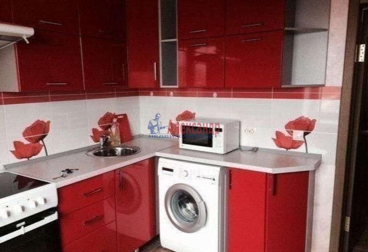 1-комнатная квартира (30м2) в аренду по адресу Ленинский пр., 117— фото 3 из 4