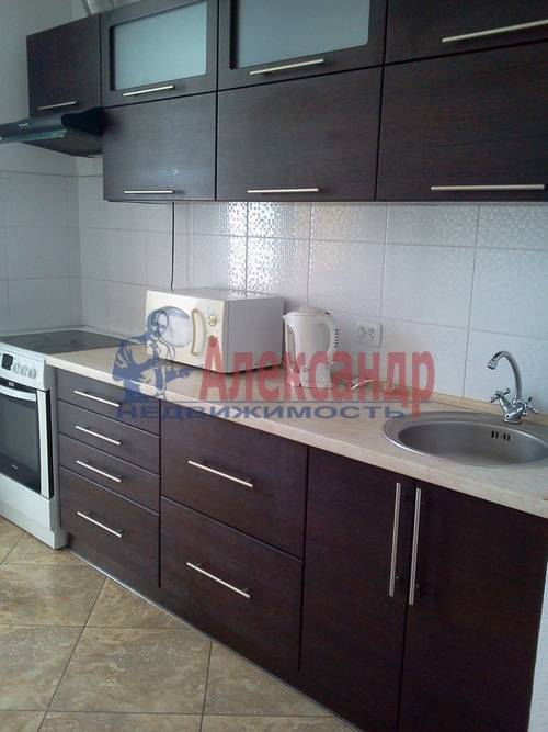 1-комнатная квартира (45м2) в аренду по адресу Энгельса пр., 97— фото 1 из 7