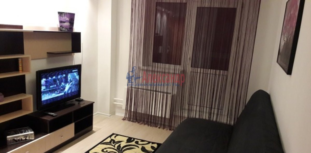 1-комнатная квартира (41м2) в аренду по адресу Дачный пр., 17— фото 2 из 3