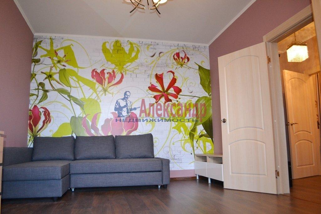 1-комнатная квартира (44м2) в аренду по адресу Бутлерова ул., 11— фото 5 из 16