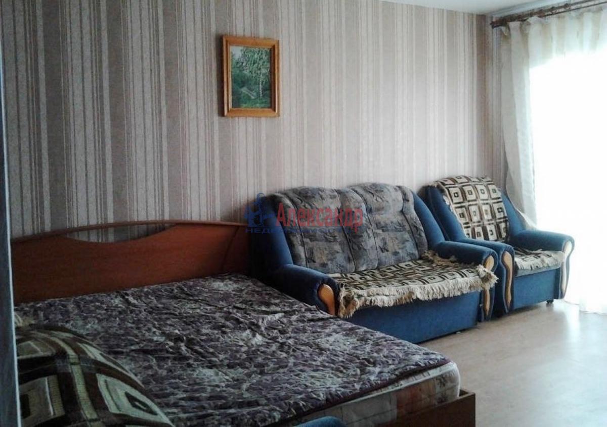 1-комнатная квартира (31м2) в аренду по адресу Трамвайный пр., 19— фото 3 из 5