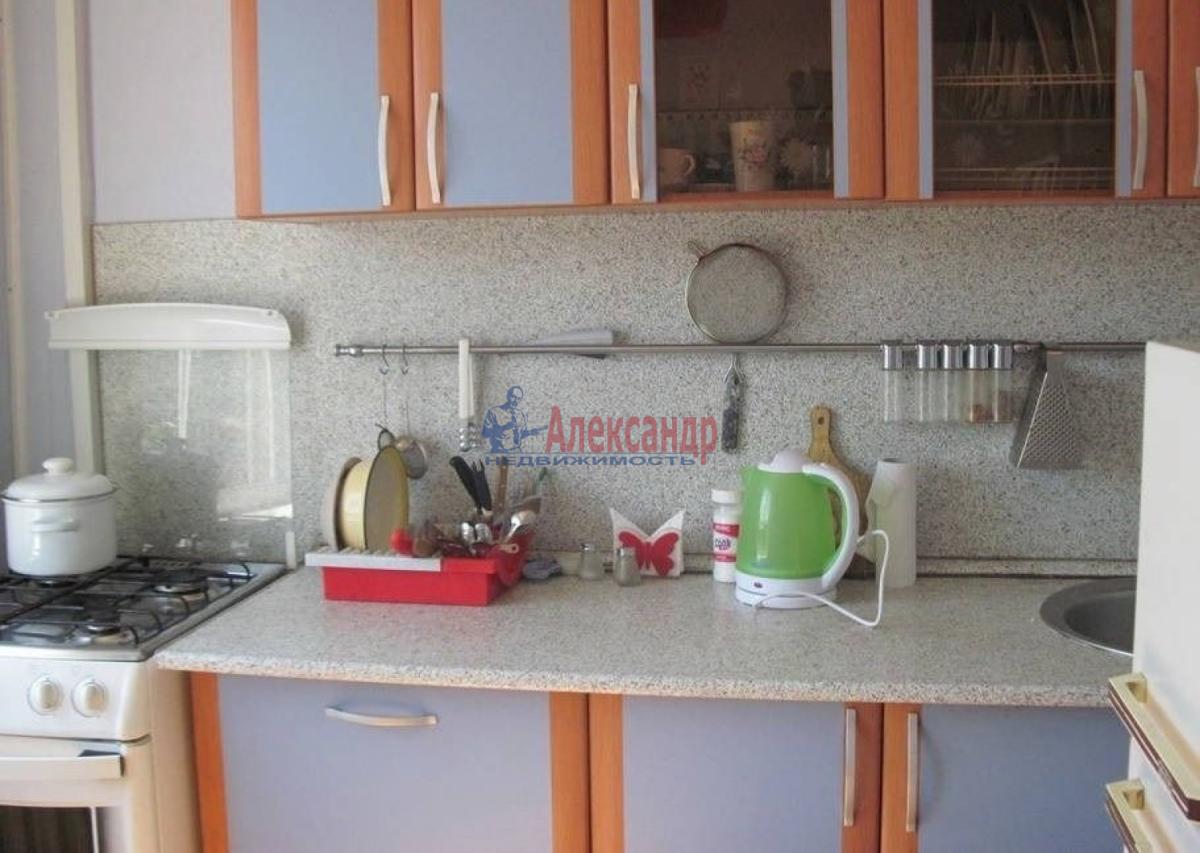 1-комнатная квартира (31м2) в аренду по адресу Трамвайный пр., 19— фото 1 из 5