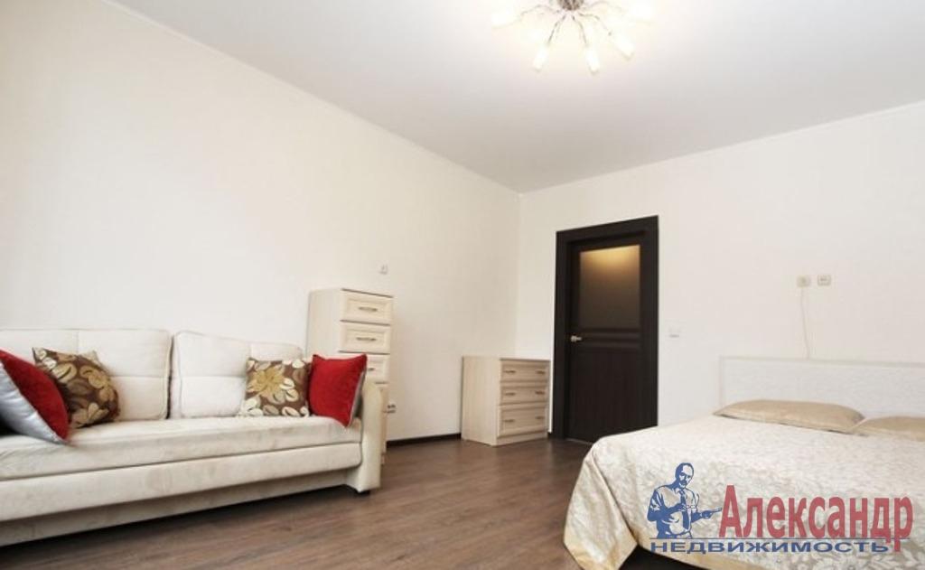 1-комнатная квартира (35м2) в аренду по адресу Луначарского пр., 78— фото 1 из 5