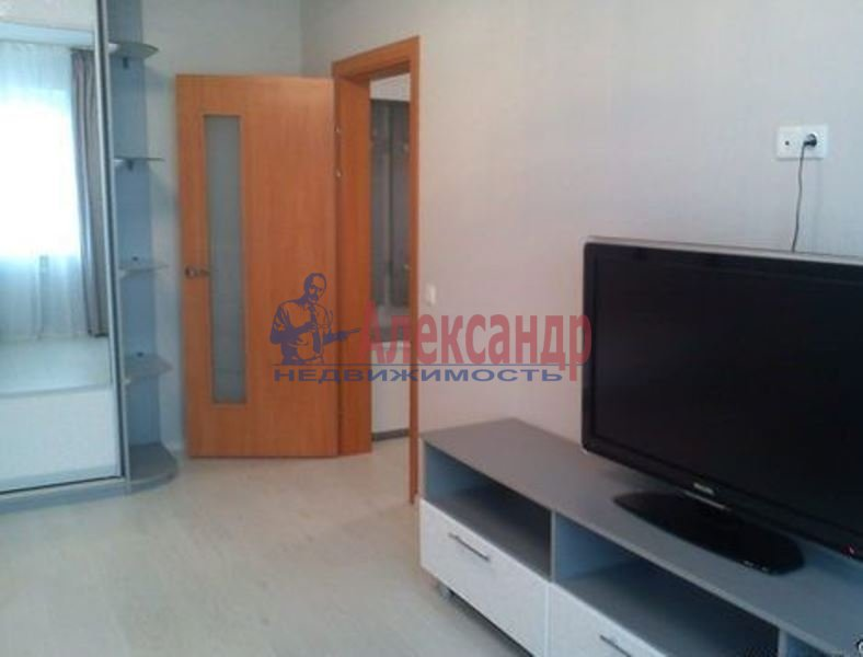 1-комнатная квартира (43м2) в аренду по адресу Адмирала Трибуца ул., 7— фото 4 из 4