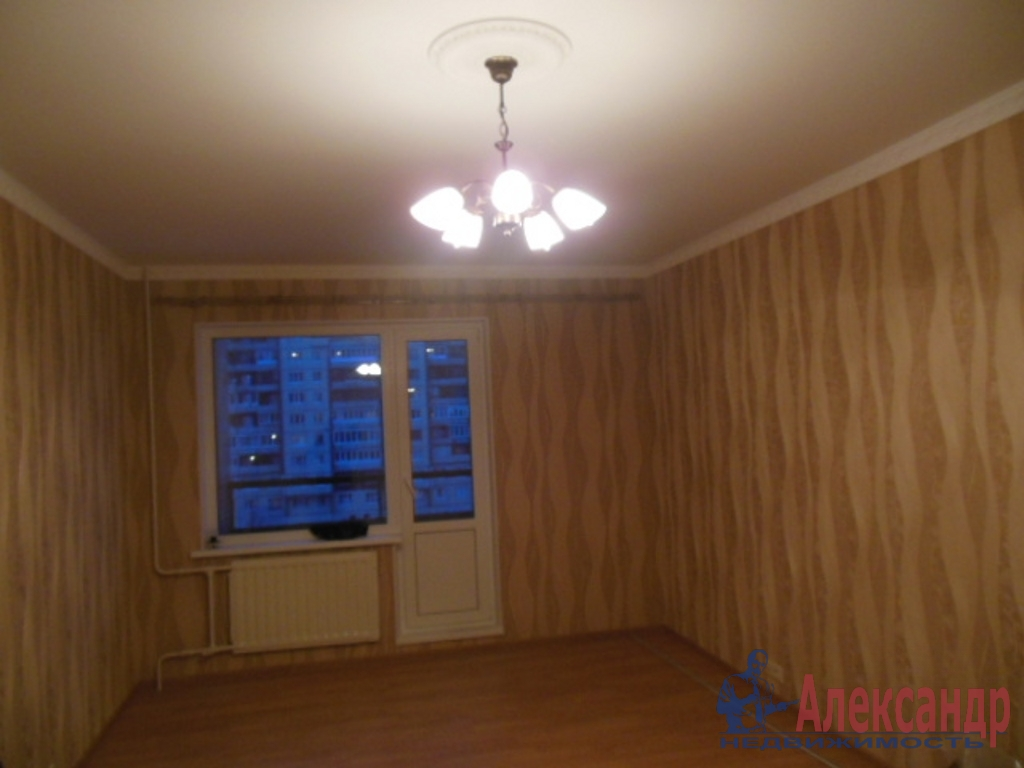 1-комнатная квартира (35м2) в аренду по адресу Большевиков пр., 9— фото 1 из 3