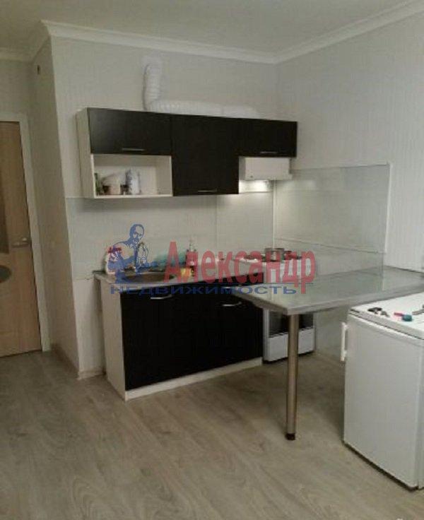 1-комнатная квартира (29м2) в аренду по адресу Туристская ул., 24/46— фото 2 из 5
