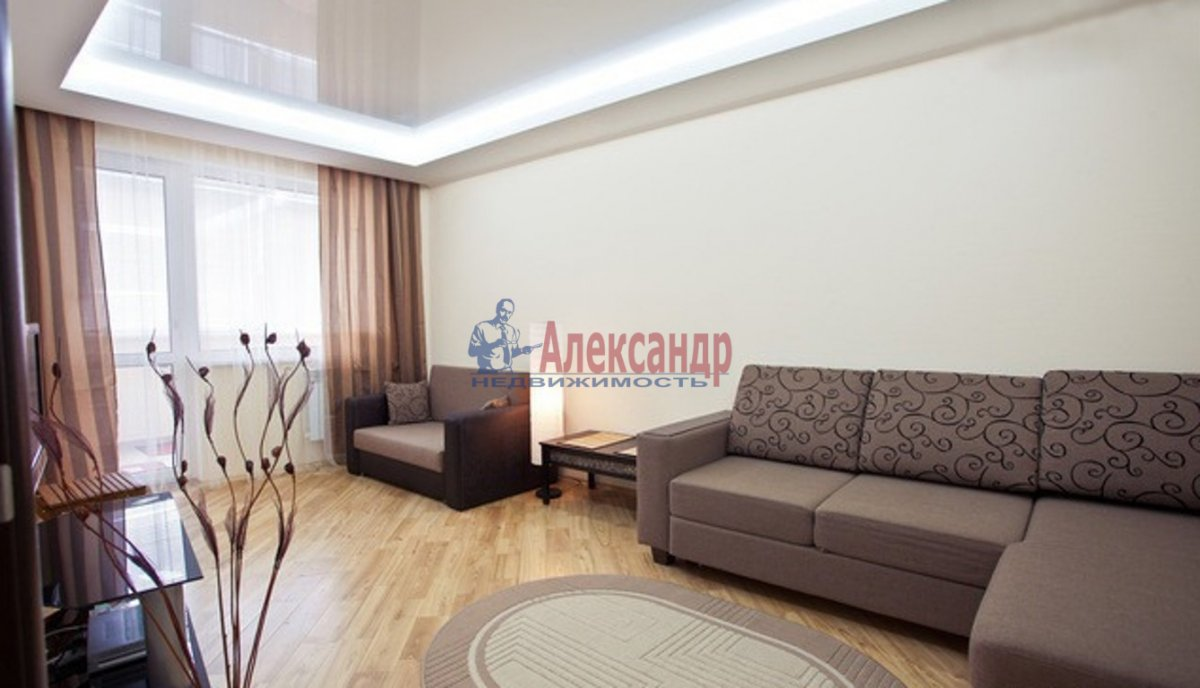 1-комнатная квартира (47м2) в аренду по адресу Кронштадтская ул., 13— фото 1 из 3