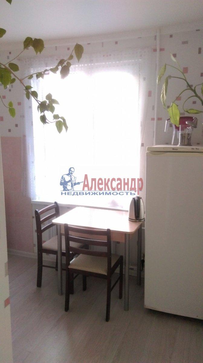 2-комнатная квартира (46м2) в аренду по адресу Большевиков пр., 51— фото 1 из 10