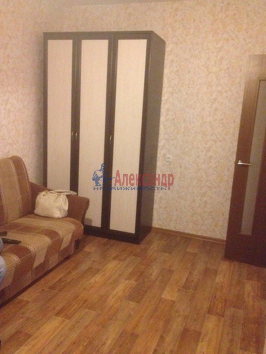 2-комнатная квартира (51м2) в аренду по адресу Космонавтов просп., 65— фото 2 из 10