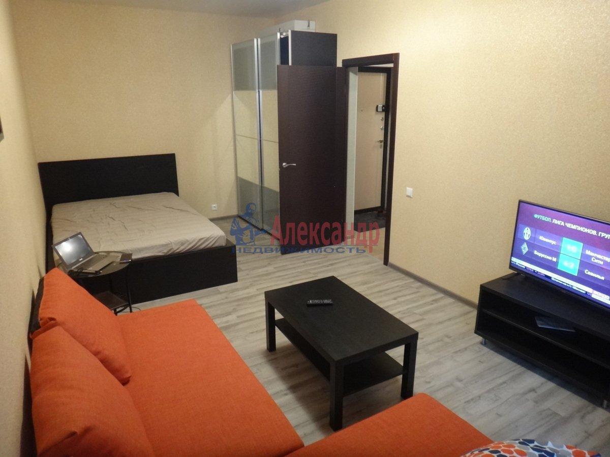 1-комнатная квартира (45м2) в аренду по адресу Белы Куна ул., 1— фото 3 из 13