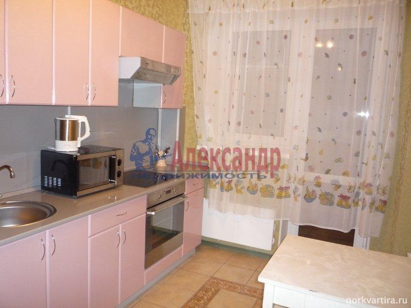 1-комнатная квартира (43м2) в аренду по адресу Московский просп., 183— фото 4 из 5
