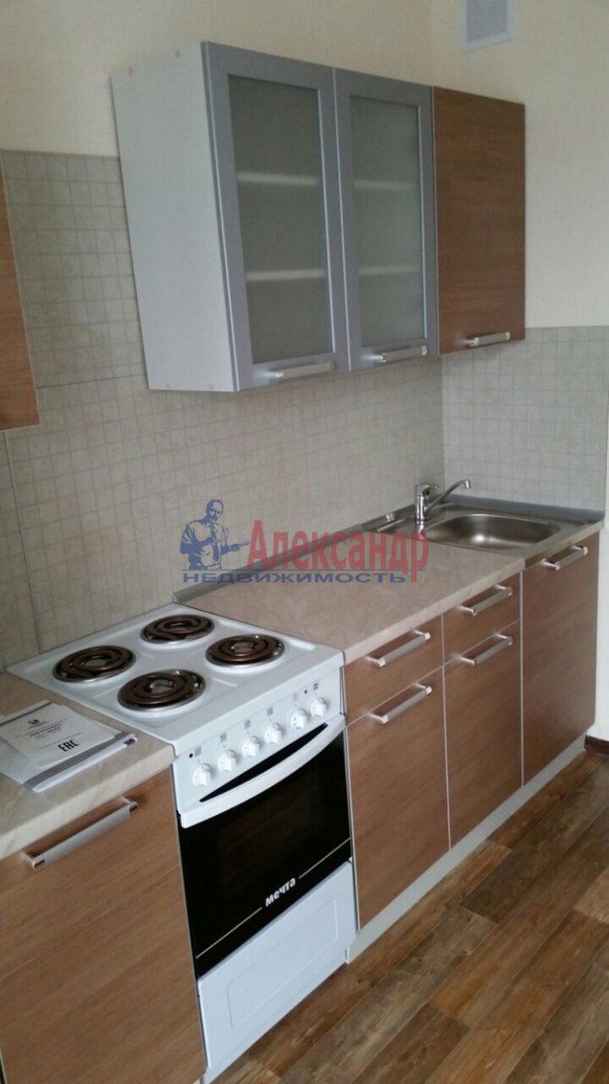1-комнатная квартира (40м2) в аренду по адресу Кушелевская дор., 3— фото 5 из 8