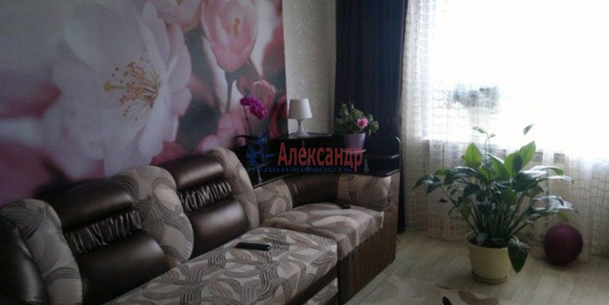 1-комнатная квартира (30м2) в аренду по адресу Большевиков пр., 19— фото 1 из 3