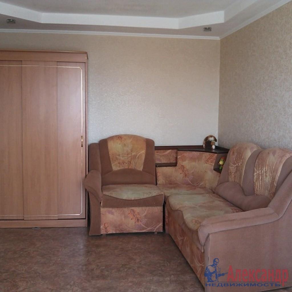 3-комнатная квартира (42м2) в аренду по адресу Богатырский пр., 53— фото 3 из 6