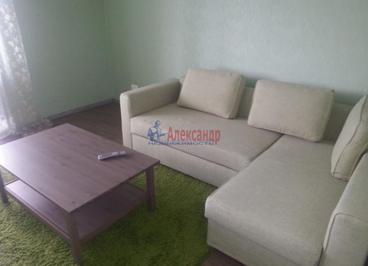 1-комнатная квартира (45м2) в аренду по адресу Ветеранов пр., 75— фото 5 из 6