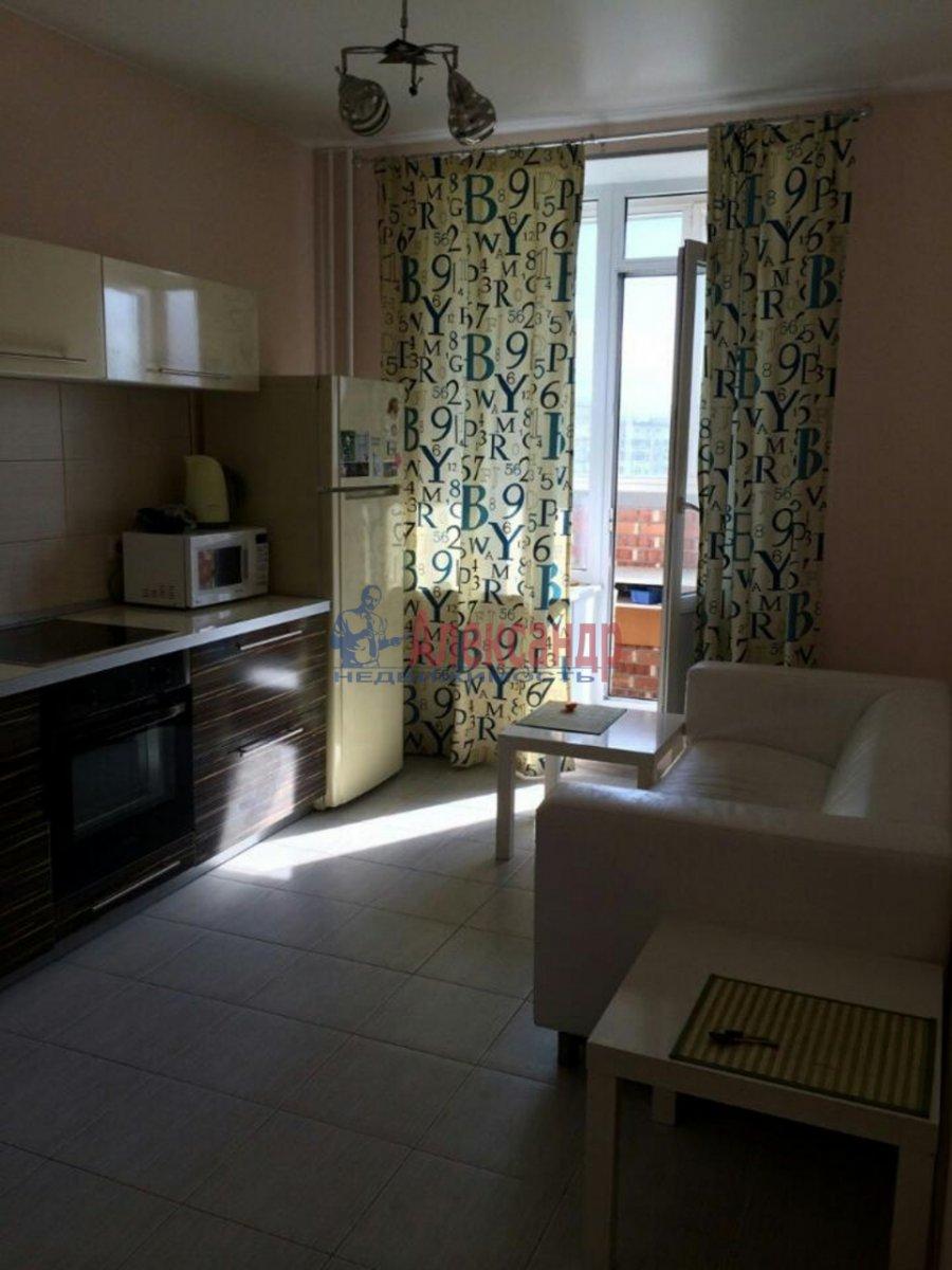 1-комнатная квартира (43м2) в аренду по адресу Ворошилова ул., 31— фото 5 из 5