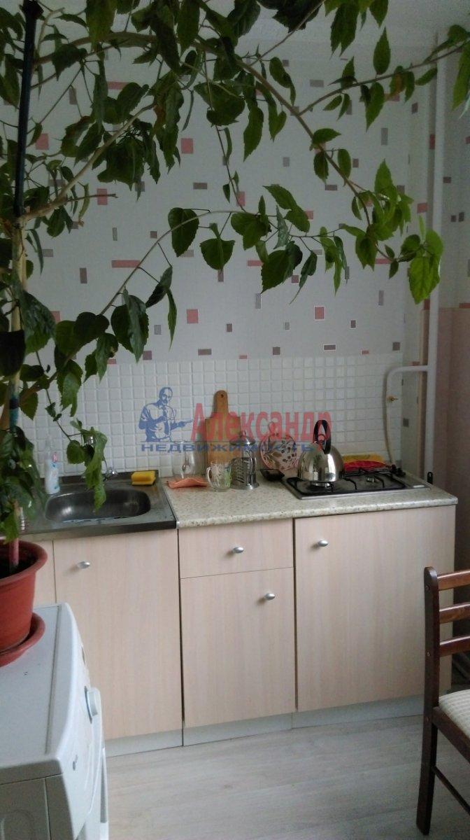 2-комнатная квартира (46м2) в аренду по адресу Большевиков пр., 51— фото 3 из 10