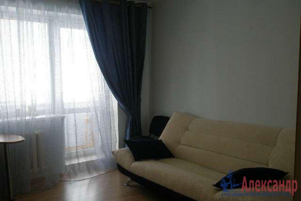 1-комнатная квартира (45м2) в аренду по адресу Гаккелевская ул., 33— фото 1 из 2