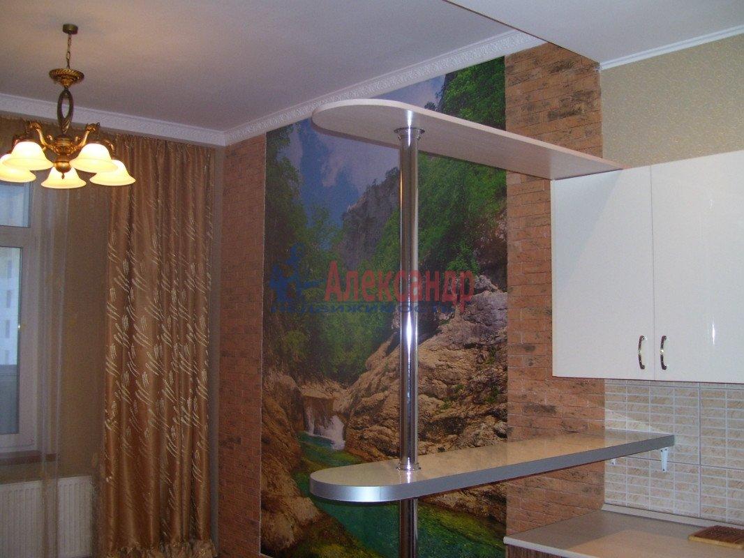 1-комнатная квартира (35м2) в аренду по адресу Маршала Блюхера пр., 21— фото 3 из 10