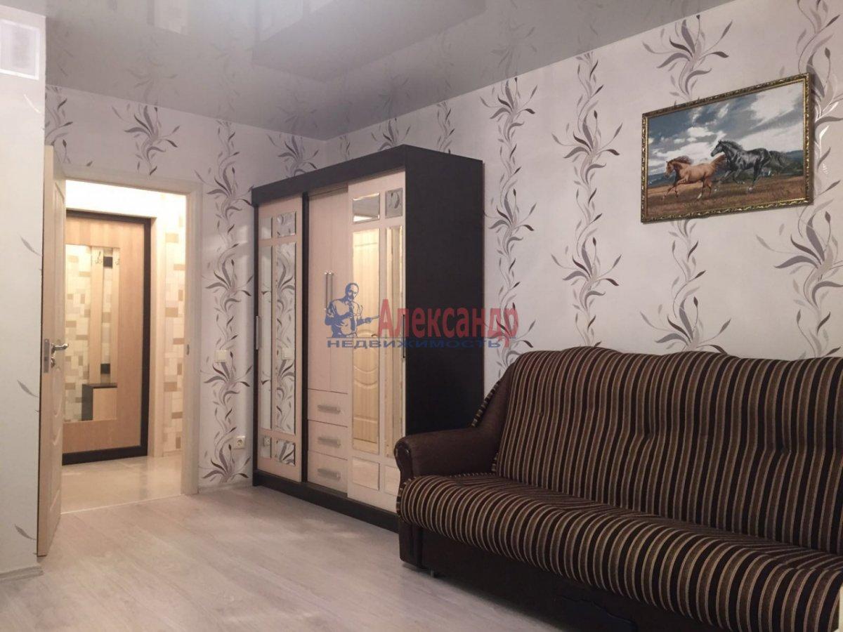 1-комнатная квартира (27м2) в аренду по адресу Мурино пос., Авиаторов Балтики пр., 5— фото 1 из 5