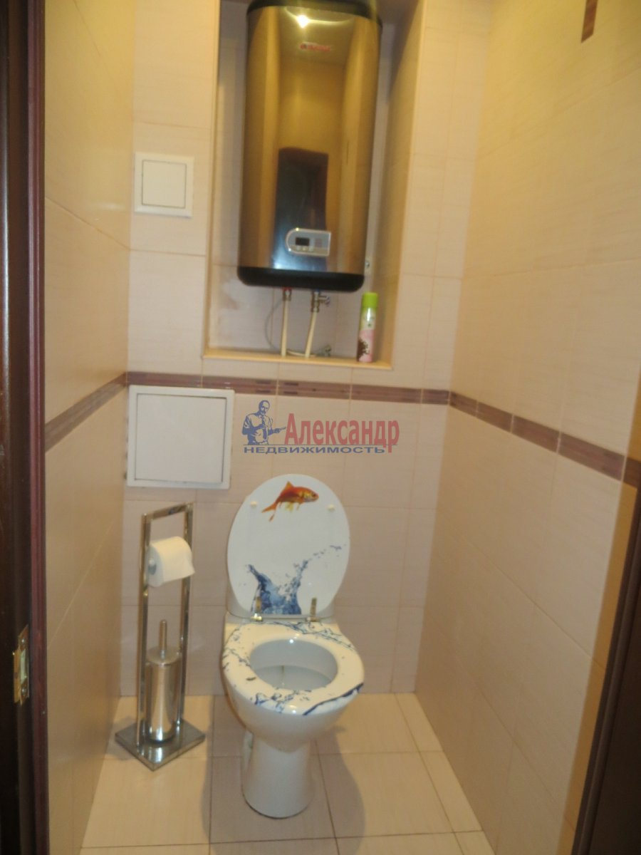 1-комнатная квартира (35м2) в аренду по адресу Южное шос., 76— фото 8 из 8